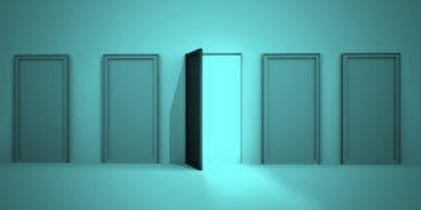 thumbnail of: 100 Doors
